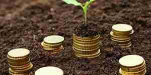 青農貸款額度最高200萬 5年免息